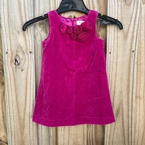 The Children's Place Magenta Velour Dress 3T